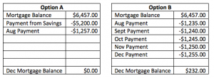 Debt Repayment Options